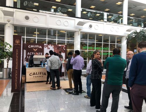 Full Brand Activation & Promotional Launch | Canary Wharf